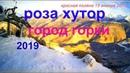 ✽Погода в горах 19 Января 2019│Красная поляна 2019