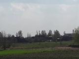 Сильный ветер сдувал аистов в Слуцком районе
