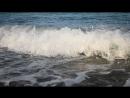 Легкий утренний шторм на Черном море