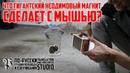 Что ГИГАНТСКИЙ НЕОДИМОВЫЙ МАГНИТ СДЕЛАЕТ С МЫШЬЮ ПО РУССКИ