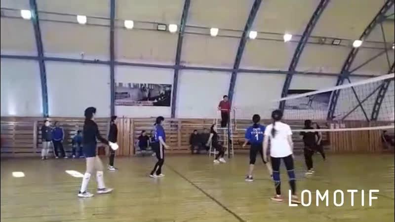 Волейбол 2019
