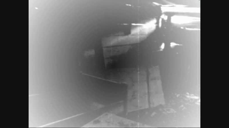 Дом Вдовы - Pit of vampire... open! (official video)