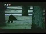 Юрий Шевчук (ДДТ) об Анатолии Крупнове - Программа А (РТР, 24.12.1999)