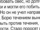 Участковый-писатель.mp4