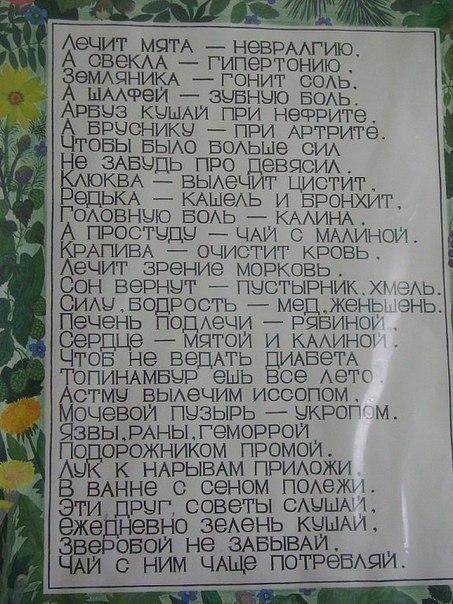 Фото 191734432