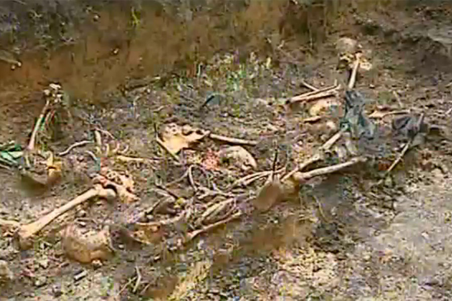 В Солнцевском районе найдены останки 15 жертв фашизма
