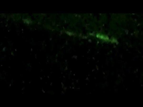 Night Vision UFO Landing? Zürich 20.11.2018