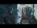 Harley Quinn Diana Prince
