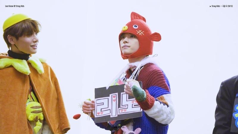 181117 스트레이 키즈 Stray Kids 고양 팬사인회 / '극과 극 (N/S)' (리노 LeeKnow focus)
