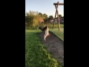 Slo-mo as lad tries to backflip but faceplants in the dirt