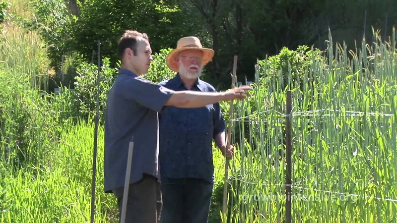 Session 8 Part A GROW BIOINTENSIVE A Beginner's Guide Choosing Your Crops