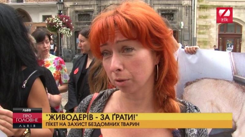Львівяни пікетували мерію на захист бездомних тварин