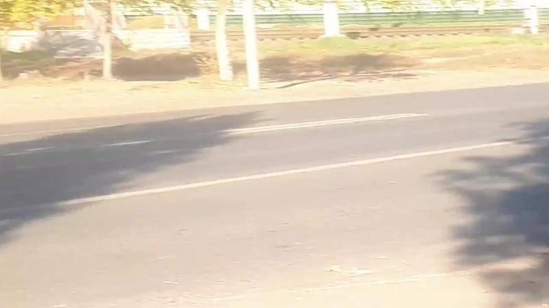 Водитель иномарки снес металлические ограждения в Заводском районе