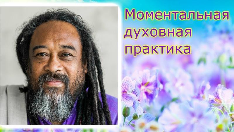 Муджи Моментальная духовная практика