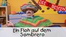 Ein Floh auf dem Sombrero