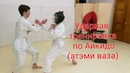 Aikido atemi wasa and hands deflection