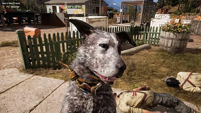 собака-напарник в Far Cry 5