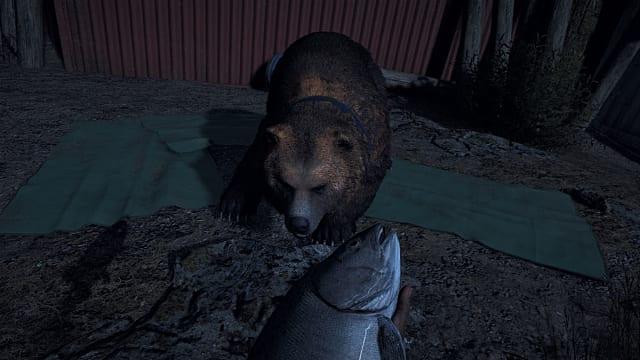 медведь напарник в Far Cry 5
