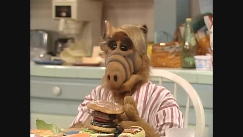 Сезон 03 Серия 10 Страницы моей памяти   Альф (1986-1990) Alf   My Back Pages