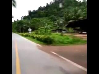 Моё путешествие на остров Koh Chang !!!