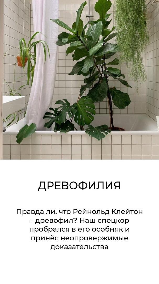 https://pp.userapi.com/c845122/v845122985/1cf25a/Ktbq3cQUOgE.jpg