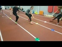 Allgemeine Kräftigung Lauf und Sprungkoordination mit Trainingshütchen