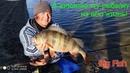Лучшая рыбалка в моей ЖИЗНИ Клюют окуни КАБАНЫ на джиг ТОП приманки на окуня осенью