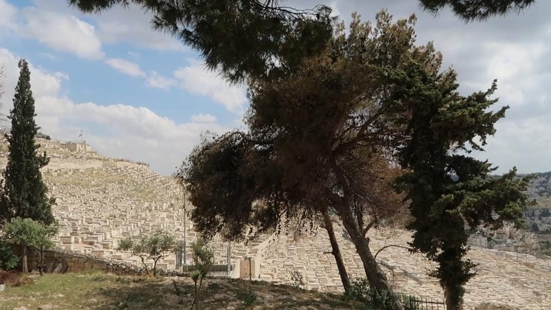 Иерусалим Гробница Богородицы Темница Иисуса Темница преступника Вараввы