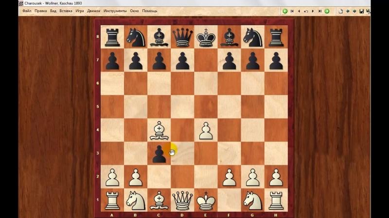 Шахматы. Что будет, если черные будут играть дерзко