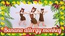 """HONEY POPCORN OH MY GIRL BANHANA """"Banana allergy monkey"""" Dance Cover 踊ってみた"""