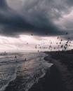 Алла Максимова фото #12