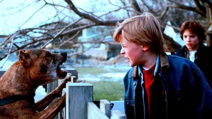 Добрый.сынок HD(триллер драма)1993