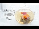 Blooming Tea |Timelapse | Mother's Day Gift Idea Mini Giveaway