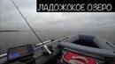 Рыбалка на Ладожском озере 12 октября 2018