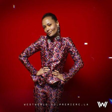 "Westworld on Instagram ""INITIATE WESTWORLD INSTAGRAM LAUNCH. @thandieandkay steps into analysis at the Delos Portrait Studio at WestworldPremier..."