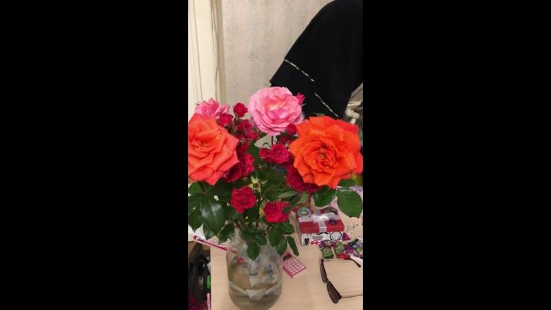 От Жениной мамы цветочки домашние с огорода её