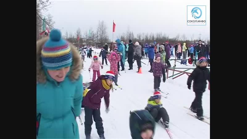 10.02.2019 Лыжня России в Соколе