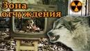 ОПАСНОСТИ ЗОНЫ ОТЧУЖДЕНИЯ / Выжить в Чернобыле