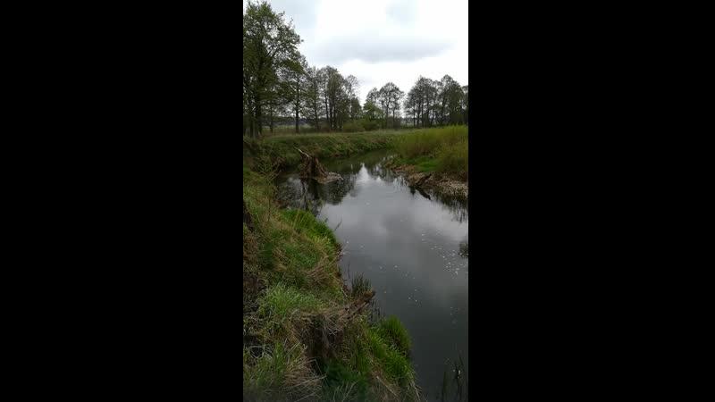 Уса река в Беларусии