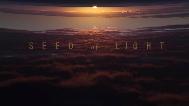 SEED of LIGHT (semilla de luz) LANZAROTE COSMOGONY.