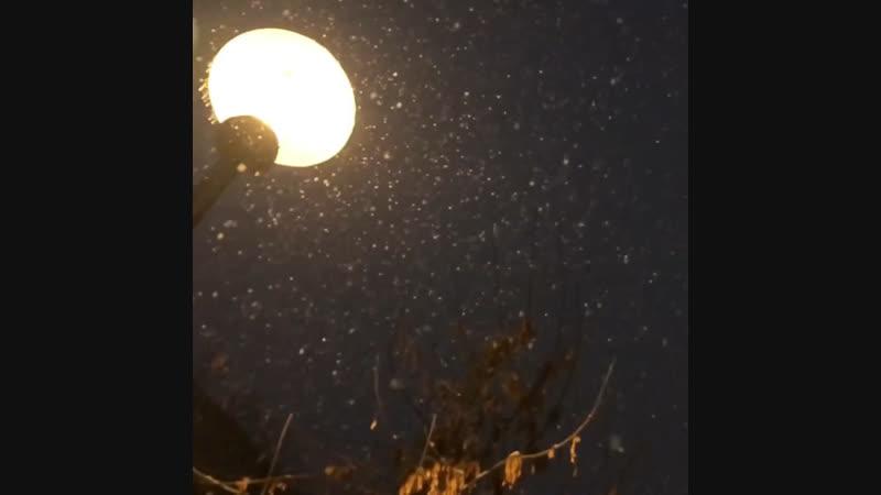 Снег,улица,фонарь....