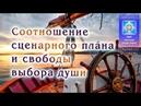 Соотношение сценарного плана и свободы выбора души Видеоблог ФЕННИКС