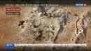 Новости на Россия 24 • Российские военные под огнем боевиков спасли из осажденного Алеппо женщин и детей