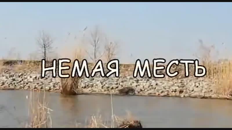 Немая месть 2012 год Криминальная драма Съемки в городе Болград и в Измаиле в Клубе 2000