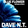 Dave N T Blue Flower Spring Story