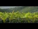 Чингисхан / Genghis Khan 2018 Full HD 1080 полный фильм смотреть полностью онлайн бесплатно в хорошем качестве 720