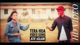Tera Hua Video Song | Atif Aslam | Loveyatri | Aayush Sharma |Tu pyar hai kisi aur ki Rahul jain