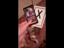 Гадание на картах Таро. Наш помощник кот Кубзик