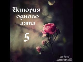 История одного аята 5. Удивительный вопрос и прекрасный ответ