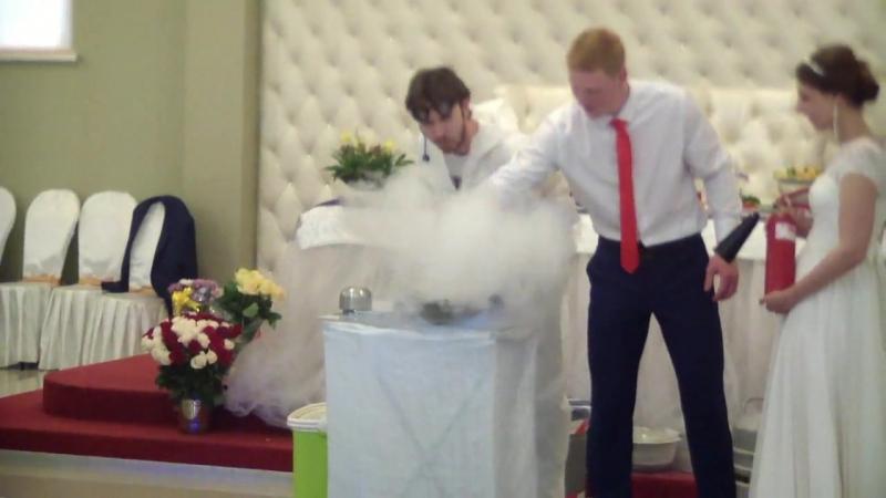Крио-шоу с жидким азотом. Свадьба